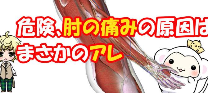 危険、肘の痛みの原因はまさかのアレ【とりさるモンの治療日記】