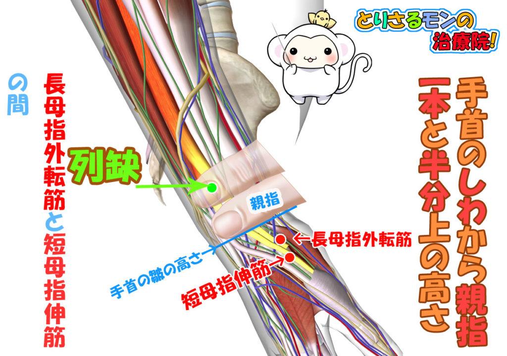太陰肺経のツボ列欠(れっけつ)